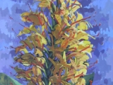 Gėlė (Hedychium) 2005.